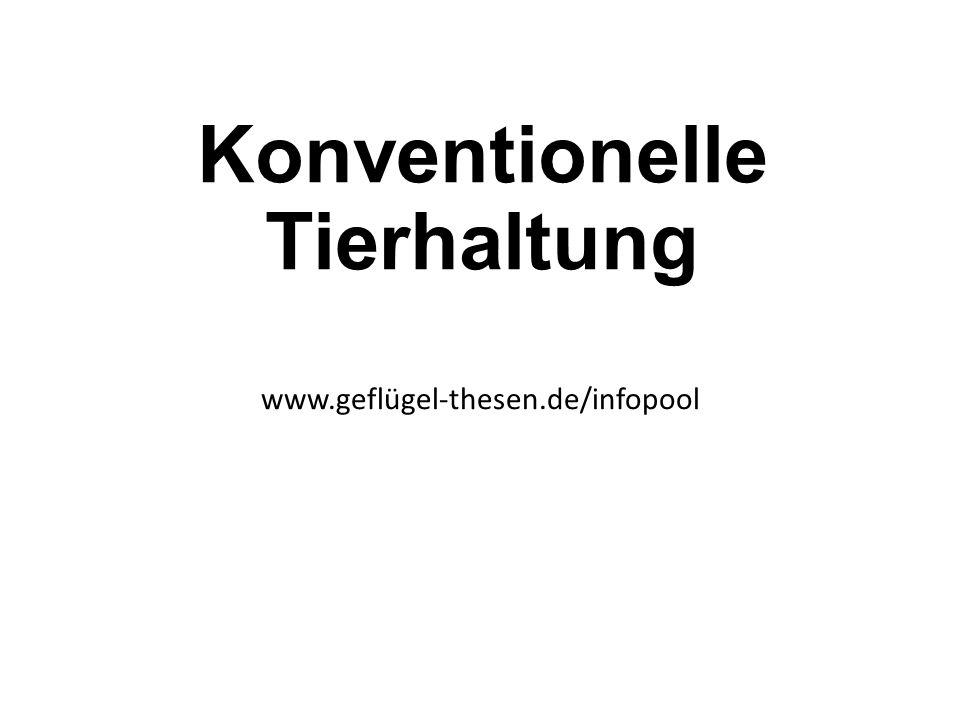 Konventionelle Tierhaltung www.geflügel-thesen.de/infopool