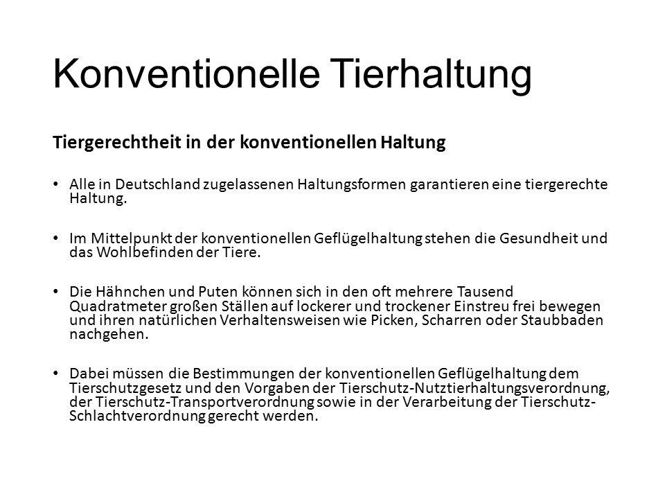Konventionelle Tierhaltung Tiergerechtheit in der konventionellen Haltung Alle in Deutschland zugelassenen Haltungsformen garantieren eine tiergerecht