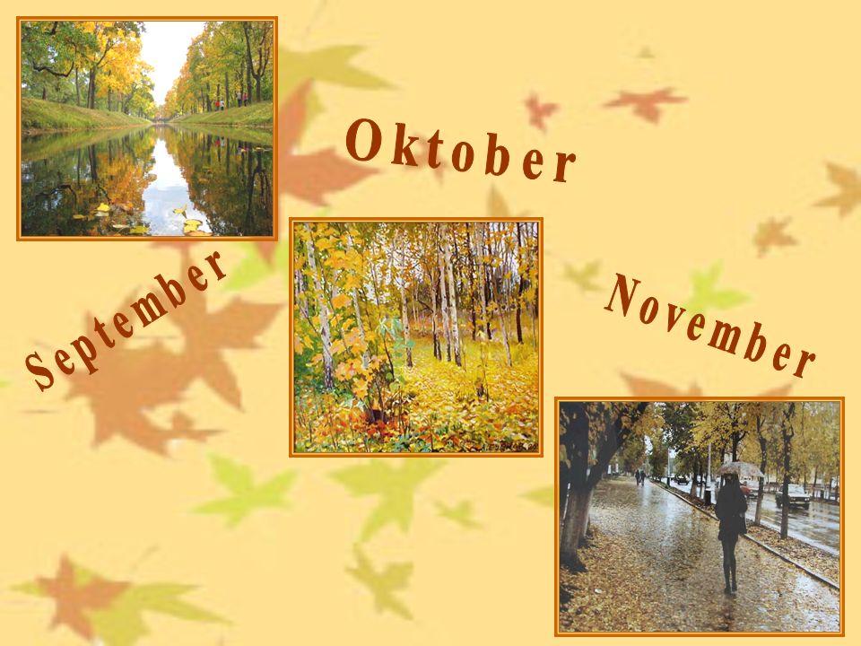 холодно ветерсерый пёстрый Идёт дождь небо овощи фрукты Der Herbst. Im Herbst ist alles reif!