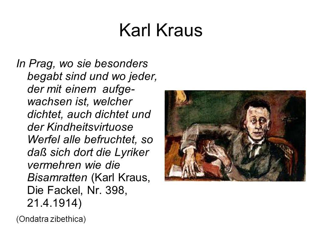 Karl Kraus In Prag, wo sie besonders begabt sind und wo jeder, der mit einem aufge- wachsen ist, welcher dichtet, auch dichtet und der Kindheitsvirtuose Werfel alle befruchtet, so daß sich dort die Lyriker vermehren wie die Bisamratten (Karl Kraus, Die Fackel, Nr.