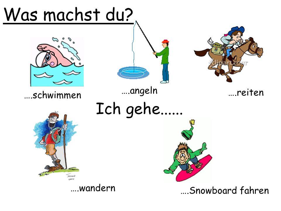 Was machst du? Ich gehe...... ….schwimmen ….reiten ….wandern ….Snowboard fahren ….angeln
