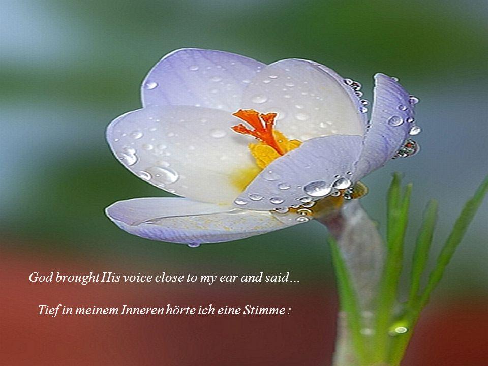 God brought His voice close to my ear and said… Tief in meinem Inneren hörte ich eine Stimme :