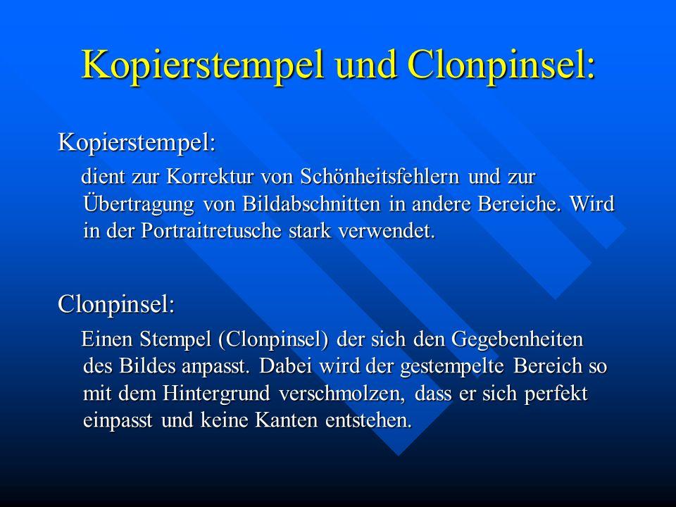 Kopierstempel und Clonpinsel: Kopierstempel: dient zur Korrektur von Schönheitsfehlern und zur Übertragung von Bildabschnitten in andere Bereiche.