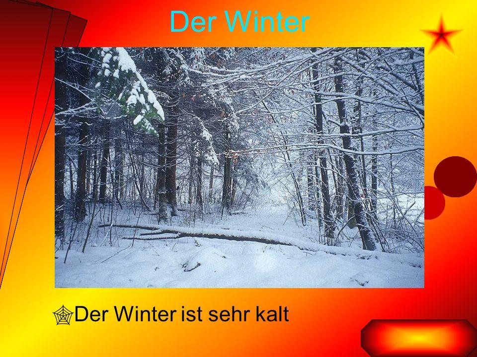 Der Winter  Der Winter ist sehr kalt