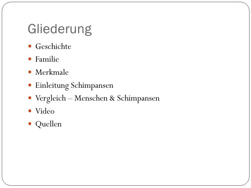 Gliederung Geschichte Familie Merkmale Einleitung Schimpansen Vergleich – Menschen & Schimpansen Video Quellen
