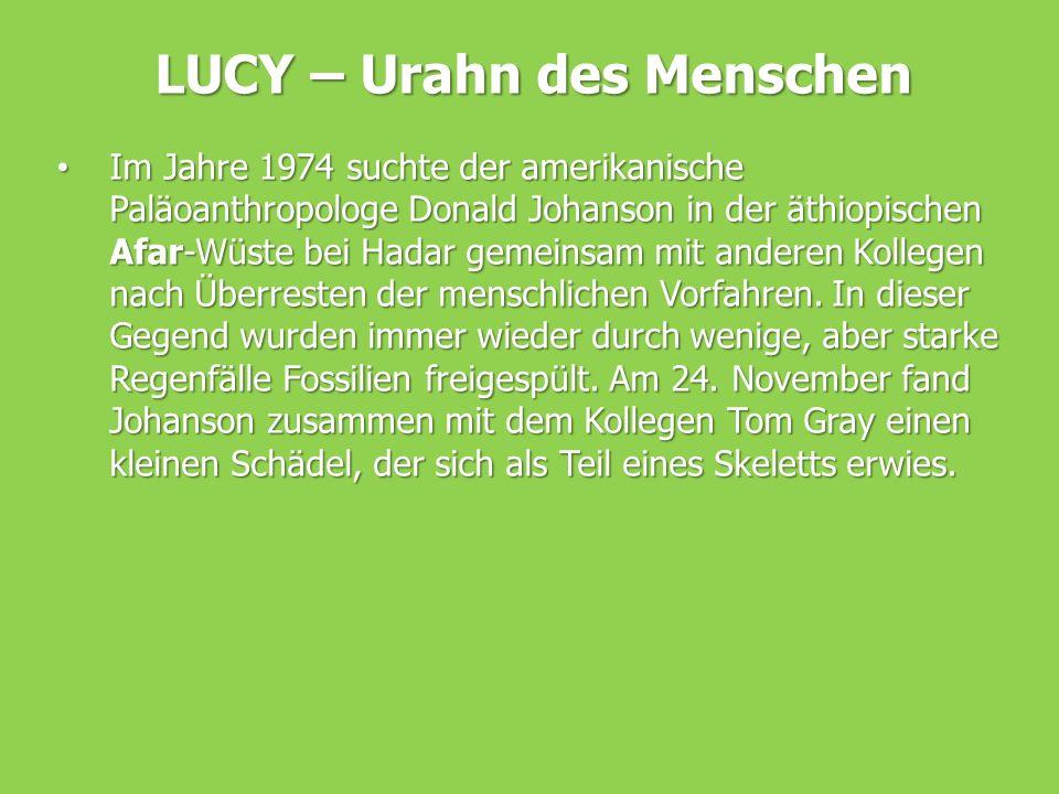 LUCY – Urahn des Menschen Im Jahre 1974 suchte der amerikanische Paläoanthropologe Donald Johanson in der äthiopischen Afar-Wüste bei Hadar gemeinsam