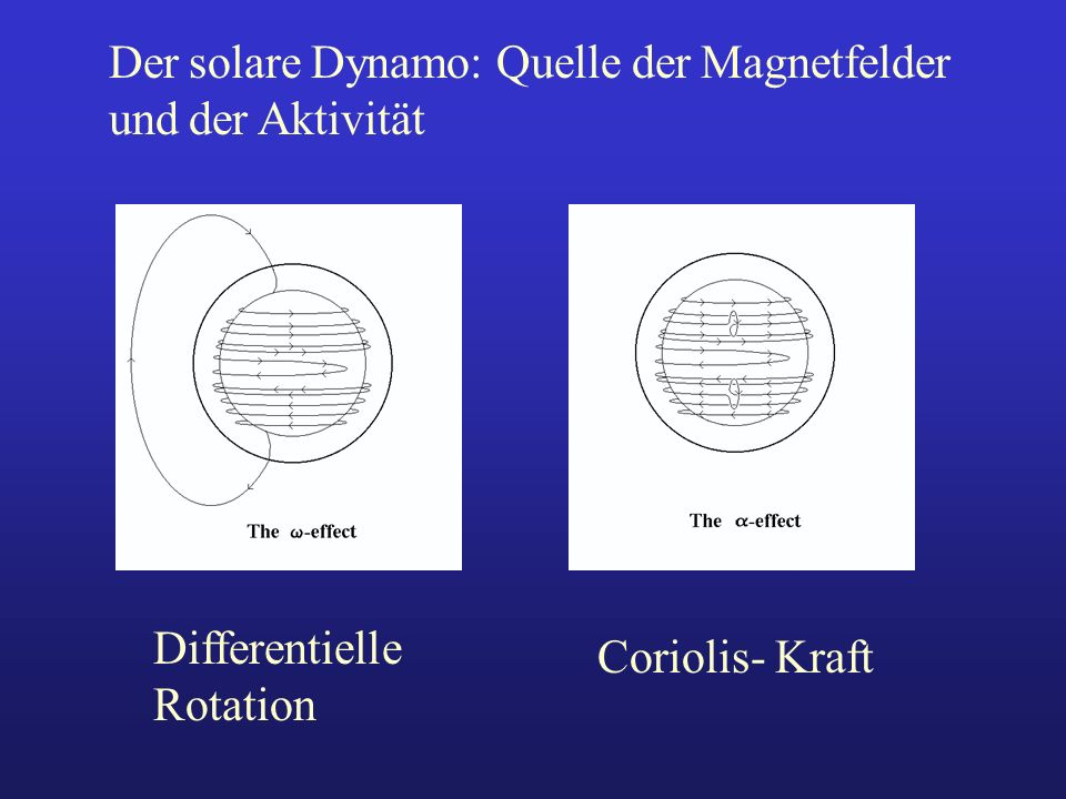 Der solare Dynamo: Quelle der Magnetfelder und der Aktivität Differentielle Rotation Coriolis- Kraft