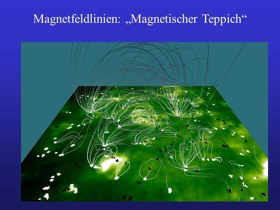 """Magnetfeldlinien: """"Magnetischer Teppich"""