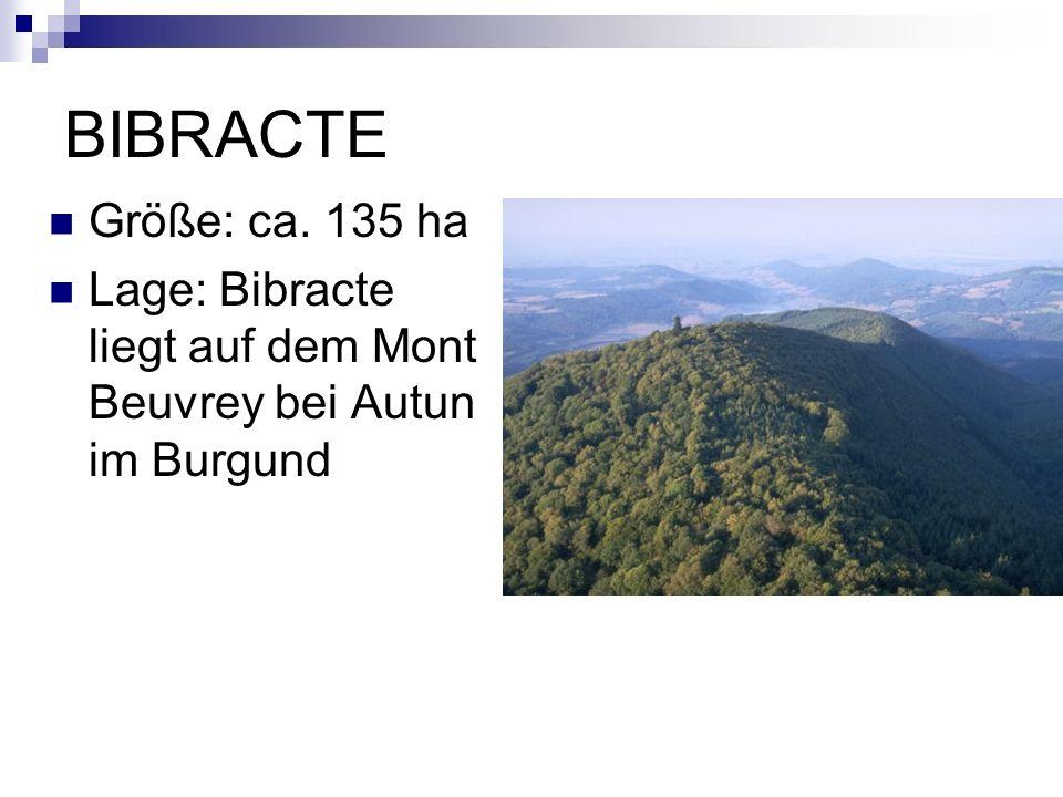 BIBRACTE Größe: ca. 135 ha Lage: Bibracte liegt auf dem Mont Beuvrey bei Autun im Burgund