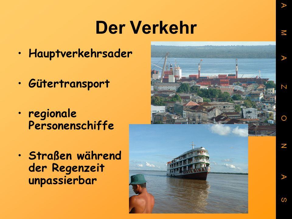 Der Verkehr Hauptverkehrsader Gütertransport regionale Personenschiffe Straßen während der Regenzeit unpassierbar A M A Z O N A S