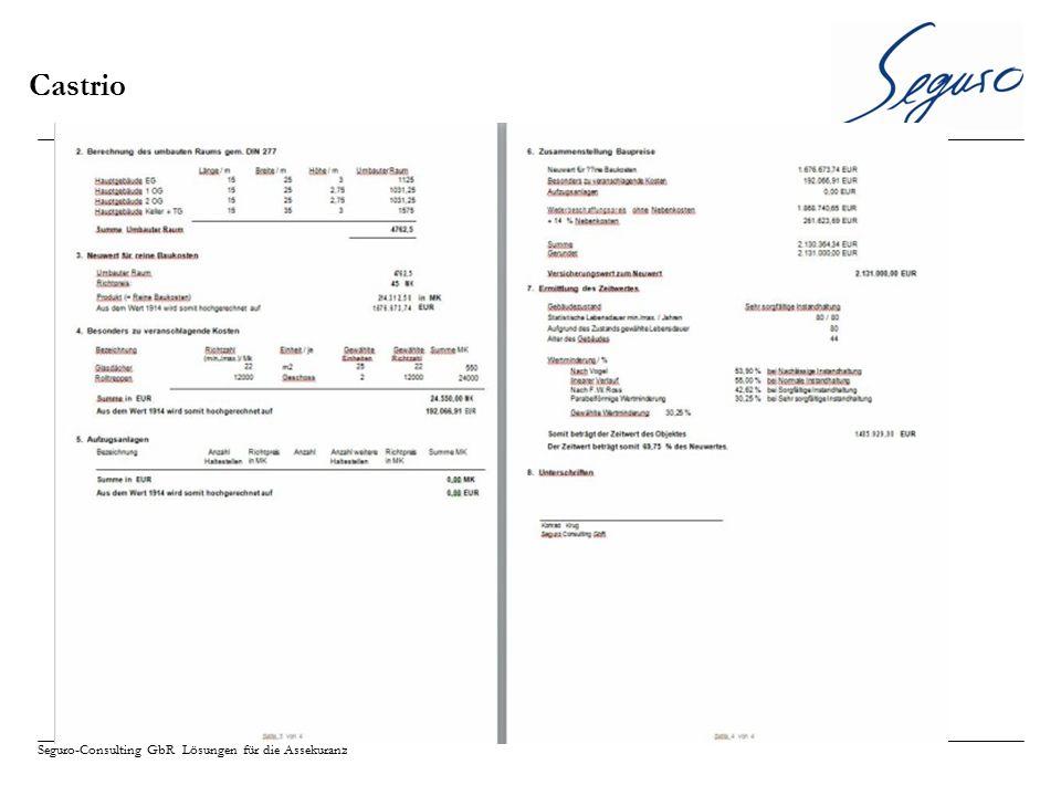 Seguro-Consulting GbR Lösungen für die Assekuranz Castrio
