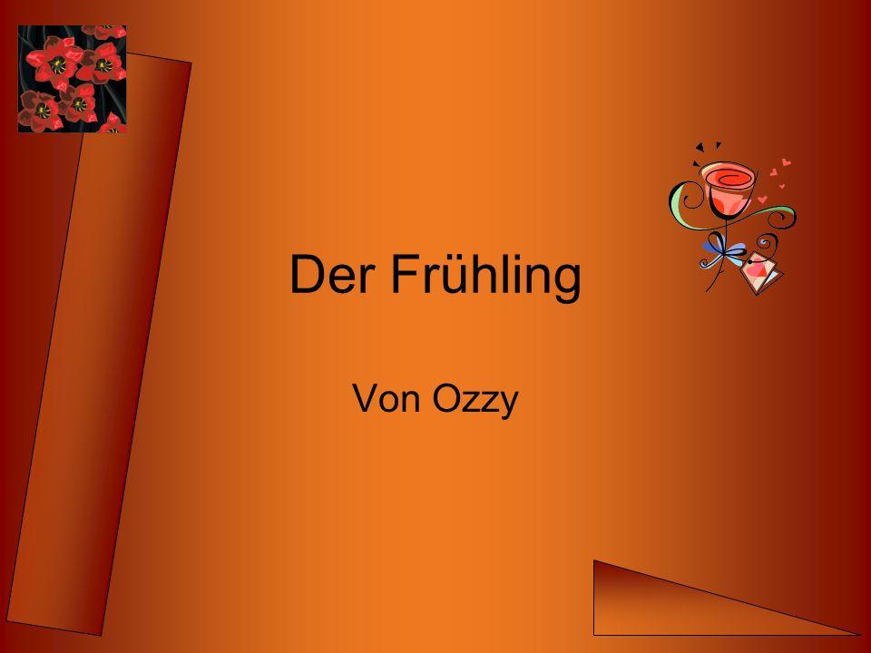 Der Frühling Von Ozzy
