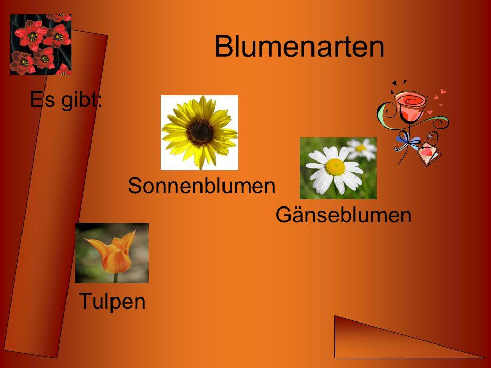Blumen Verkauf