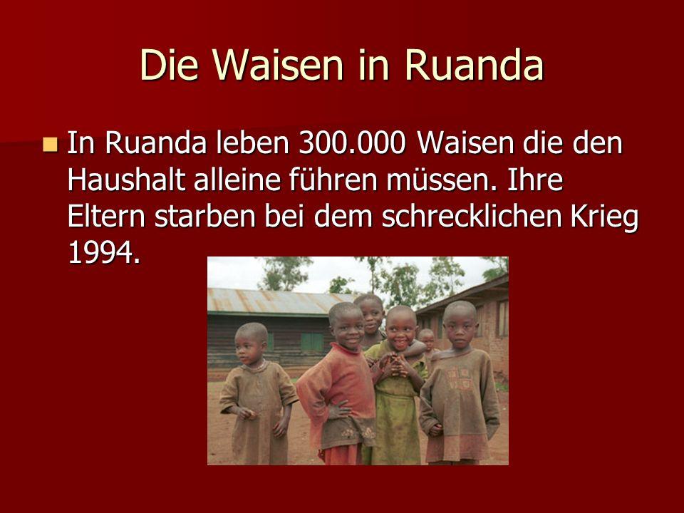 Die Waisen in Ruanda In Ruanda leben 300.000 Waisen die den Haushalt alleine führen müssen. Ihre Eltern starben bei dem schrecklichen Krieg 1994. In R