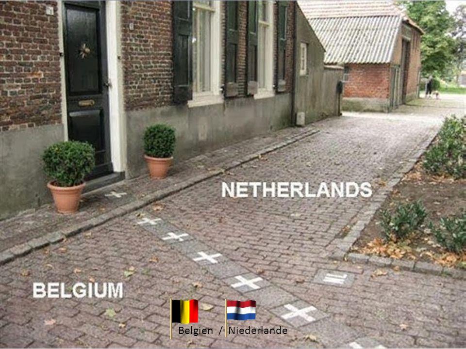 Belgien / Niederlande