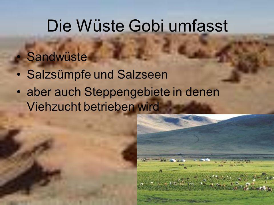 Die Wüste Gobi umfasst Sandwüste Salzsümpfe und Salzseen aber auch Steppengebiete in denen Viehzucht betrieben wird