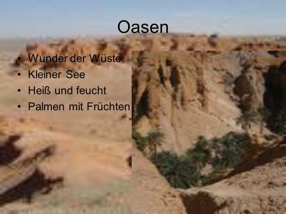 Städte Altai Kobdo Bajan Hongor Muren Suhe Bator Sajn