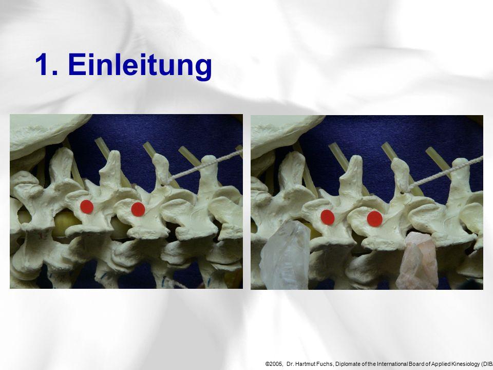 ©2005, Dr.Hartmut Fuchs, Diplomate of the International Board of Applied Kinesiology (DIBAK), 4.