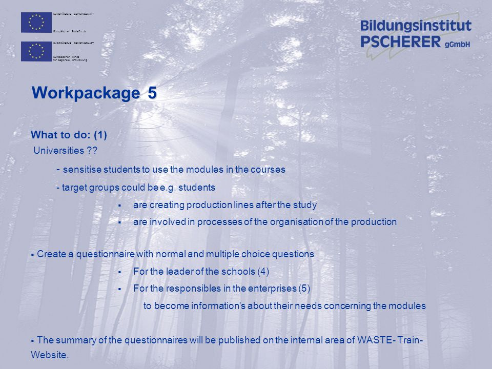 EUROPÄISCHE GEMEINSCHAFT Europäischer Sozialfonds EUROPÄISCHE GEMEINSCHAFT Europäischer Fonds für Regionale Entwicklung Workpackage 5 What to do: (2)  Build up information lines to the  workpackage 2 (P6, P7 and P8) – Development of basic tools  workpackage 3 (P2 and P4) - Development of engineering tools  workpackage 4 (P10 and 14) – Development of new training materials, blended learning  The results of testing will be published in a summary on the internal data base  Adapt the training modules with the needed changes are basing on the request  Test again, make the summary report und publish it