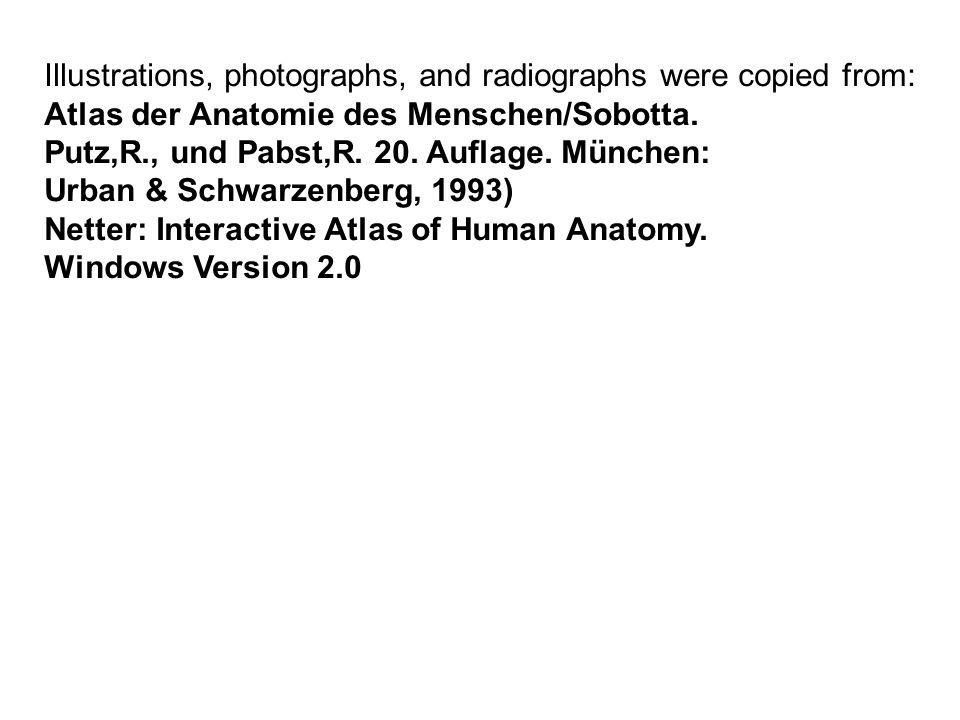 Illustrations, photographs, and radiographs were copied from: Atlas der Anatomie des Menschen/Sobotta. Putz,R., und Pabst,R. 20. Auflage. München: Urb