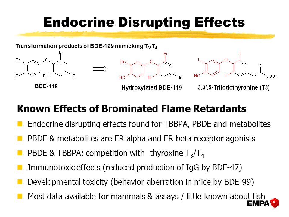 Known Effects of Brominated Flame Retardants nEndocrine disrupting effects found for TBBPA, PBDE and metabolites nPBDE & metabolites are ER alpha and