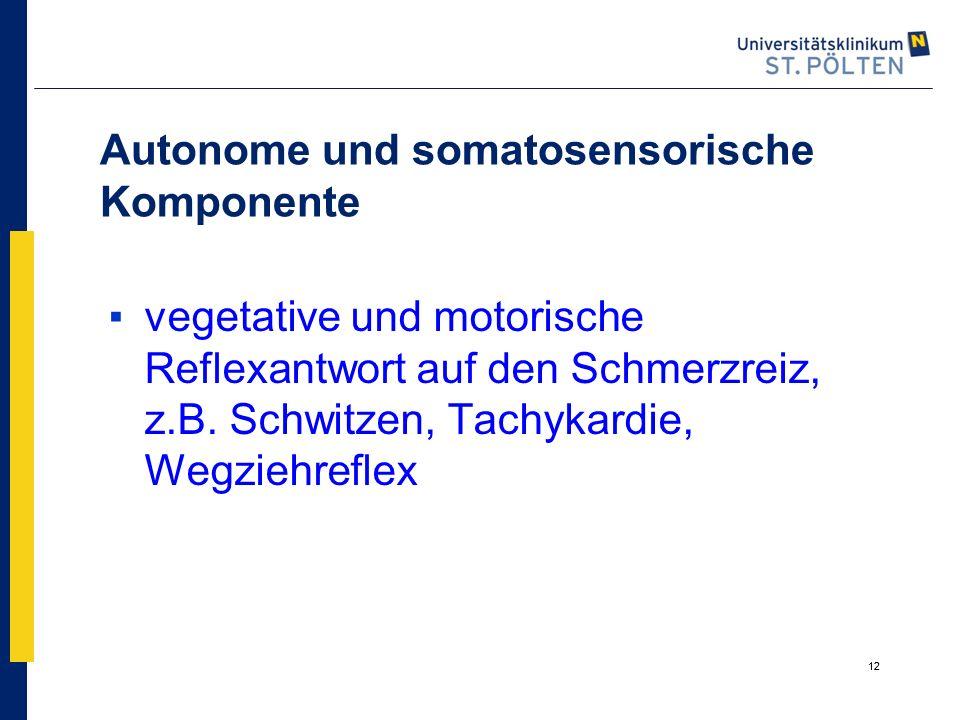 12 Autonome und somatosensorische Komponente ▪vegetative und motorische Reflexantwort auf den Schmerzreiz, z.B. Schwitzen, Tachykardie, Wegziehreflex