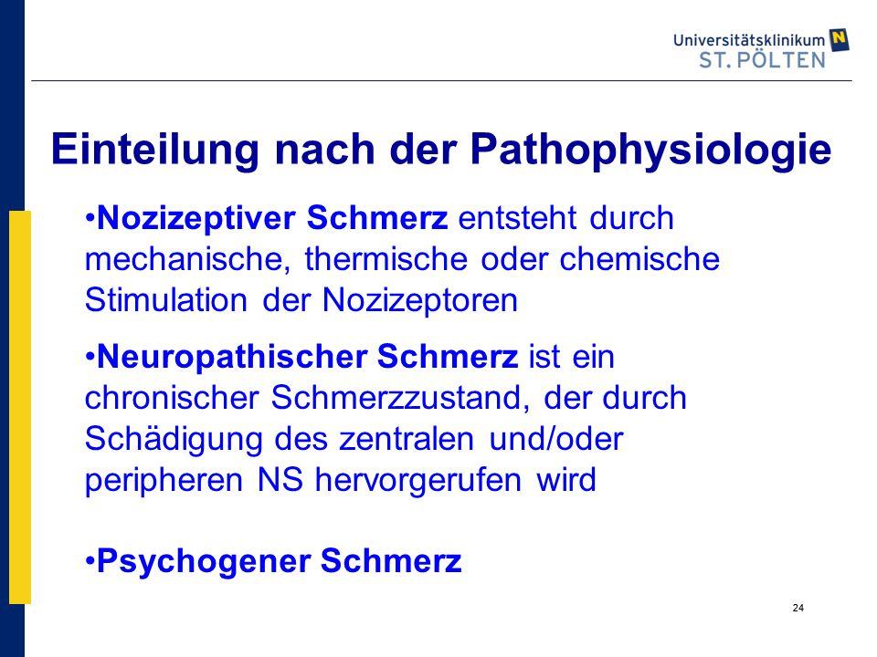 24 Einteilung nach der Pathophysiologie Nozizeptiver Schmerz entsteht durch mechanische, thermische oder chemische Stimulation der Nozizeptoren Neurop