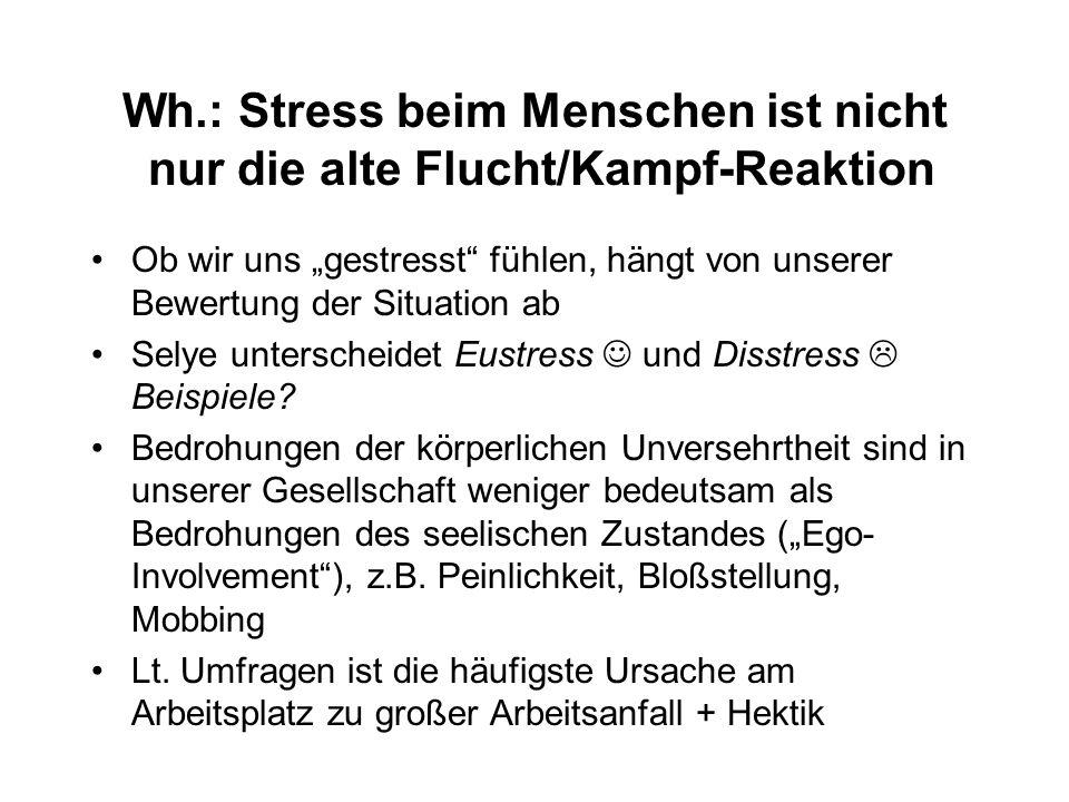 """Wh.: Stress beim Menschen ist nicht nur die alte Flucht/Kampf-Reaktion Ob wir uns """"gestresst fühlen, hängt von unserer Bewertung der Situation ab Selye unterscheidet Eustress und Disstress  Beispiele."""