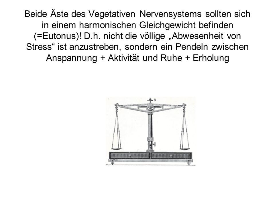 Beide Äste des Vegetativen Nervensystems sollten sich in einem harmonischen Gleichgewicht befinden (=Eutonus).