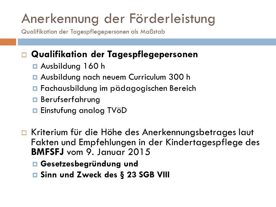 Anerkennung der Förderleistung Qualifikation der Tagespflegepersonen als Maßstab  Qualifikation der Tagespflegepersonen  Ausbildung 160 h  Ausbildu