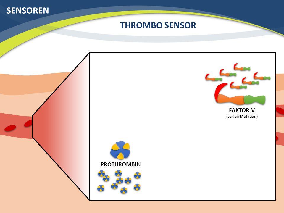 SENSOREN THROMBO SENSOR FAKTOR V (Leiden Mutation) PROTHROMBIN