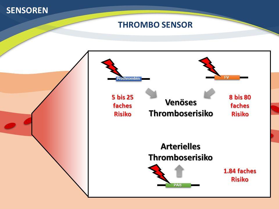 SENSOREN THROMBO SENSORFV Prothrombin Venöses Thromboserisiko PAI1 Arterielles Thromboserisiko 5 bis 25 faches Risiko 8 bis 80 faches Risiko 1.84 faches Risiko