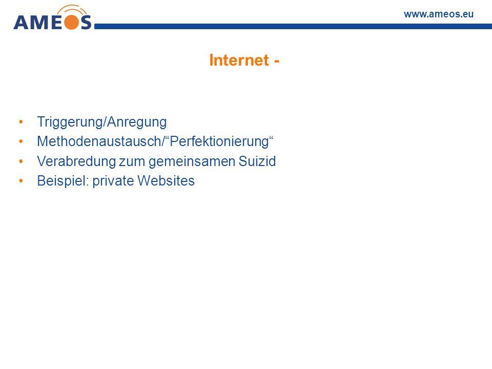 """www.ameos.eu Internet - Triggerung/Anregung Methodenaustausch/""""Perfektionierung"""" Verabredung zum gemeinsamen Suizid Beispiel: private Websites"""