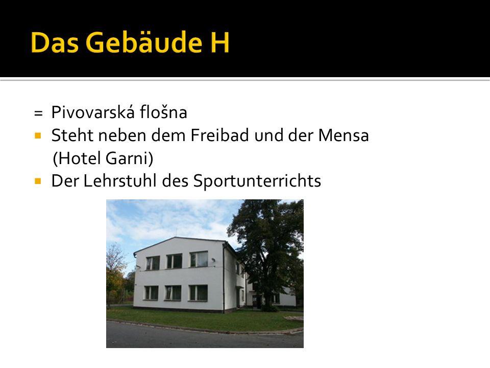= Pivovarská flošna  Steht neben dem Freibad und der Mensa (Hotel Garni)  Der Lehrstuhl des Sportunterrichts