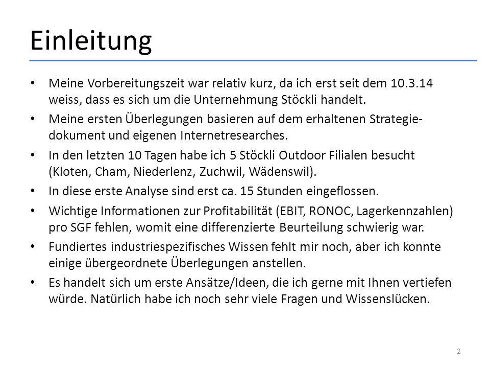 Verschiedene Ansatzpunkte – Übersicht 1.Marktleader (Skisport) in der Schweiz werden 2.Produktsortiment anpassen (Audi case: A1 – R8) 3. rent-a-stöckli-ski Strategie für die Schweiz 4.Exportanteil klar erhöhen 5.Bike-Franchise Model für die Schweiz 6.Finanziell geführte Unternehmung 7. Cost saving Initiativen 8. World class Mentalität in allen Bereichen entwickeln 9.Erhöhung des Brandimages und Bekanntheitsgrades 10.Verschiedene Ideen 3