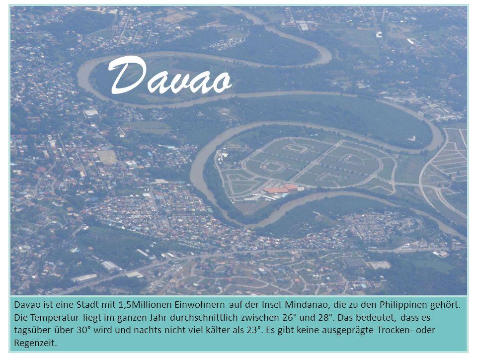 Davao ist eine Stadt mit 1,5Millionen Einwohnern auf der Insel Mindanao, die zu den Philippinen gehört. Die Temperatur liegt im ganzen Jahr durchschni