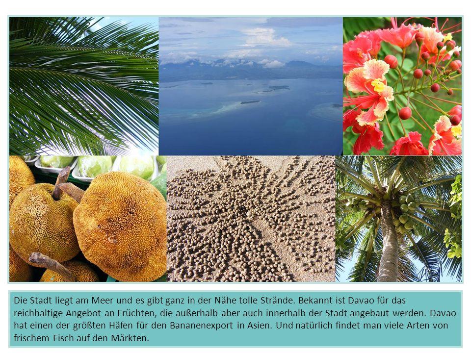 Die Stadt liegt am Meer und es gibt ganz in der Nähe tolle Strände. Bekannt ist Davao für das reichhaltige Angebot an Früchten, die außerhalb aber auc