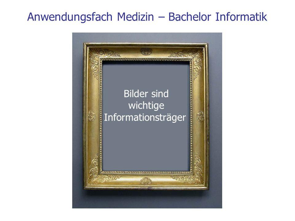 Bilder sind wichtige Informationsträger