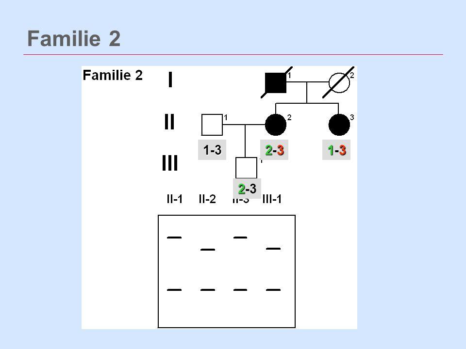 Familie 2 232-3232-31-3 131-3131-3 2 2-3