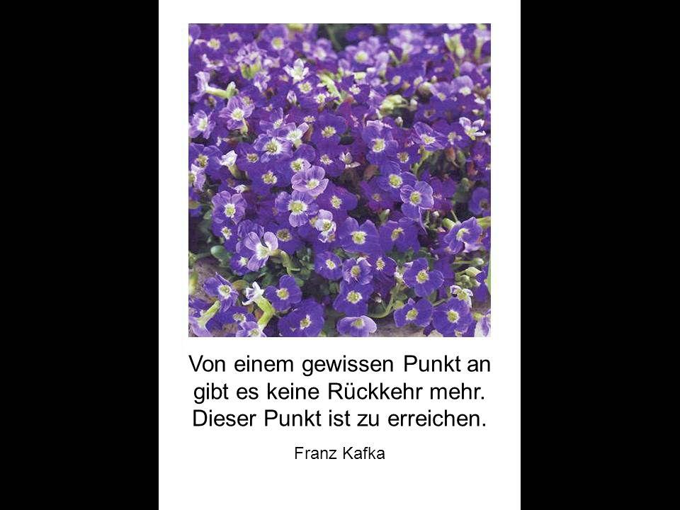 Der Mensch kann nicht leben ohne ein dauerndes Vertrauen zu etwas Unzerstörbarem in sich. Franz Kafka