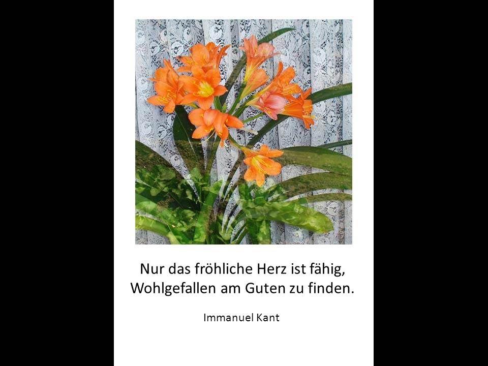 Nur das fröhliche Herz ist fähig, Wohlgefallen am Guten zu finden. Immanuel Kant