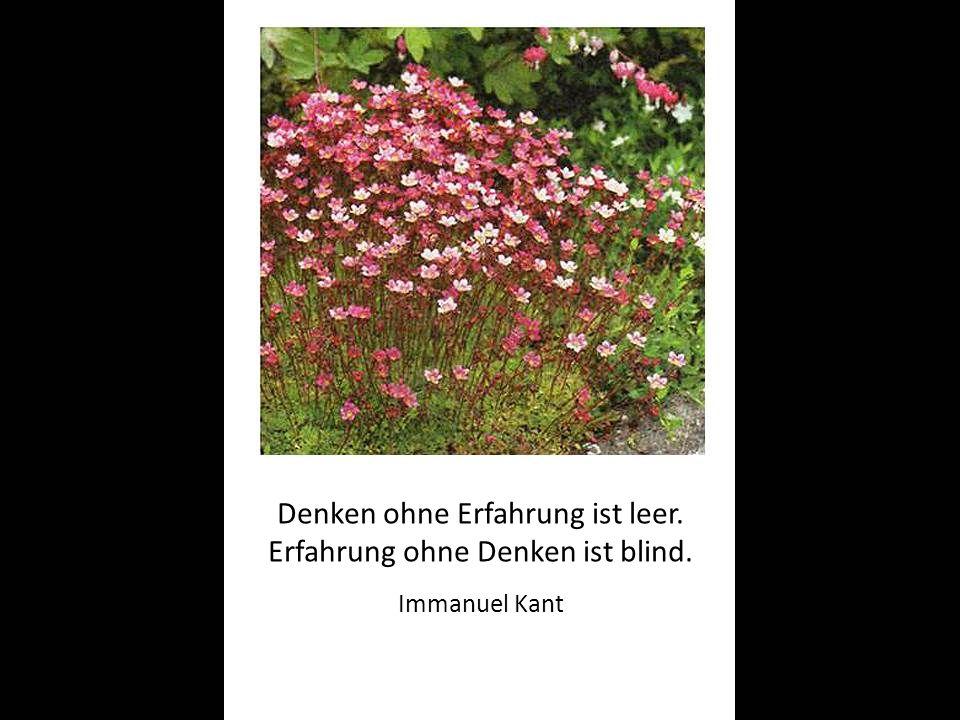 Denken ohne Erfahrung ist leer. Erfahrung ohne Denken ist blind. Immanuel Kant