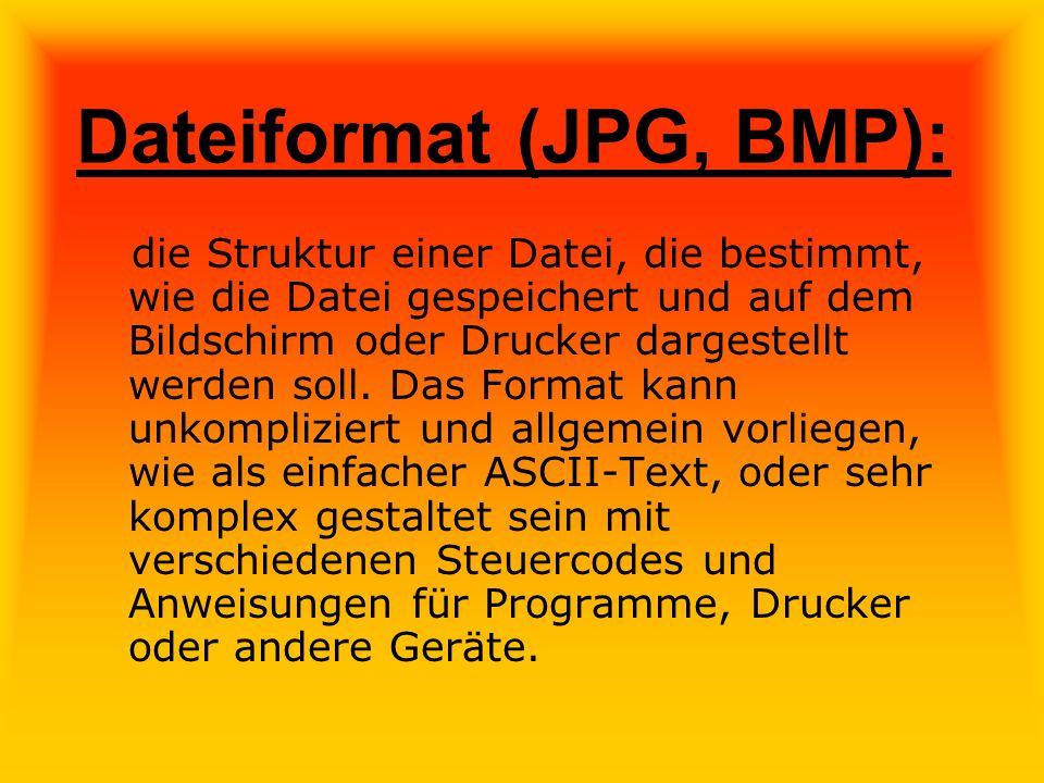 Dateiformat (JPG, BMP): die Struktur einer Datei, die bestimmt, wie die Datei gespeichert und auf dem Bildschirm oder Drucker dargestellt werden soll.