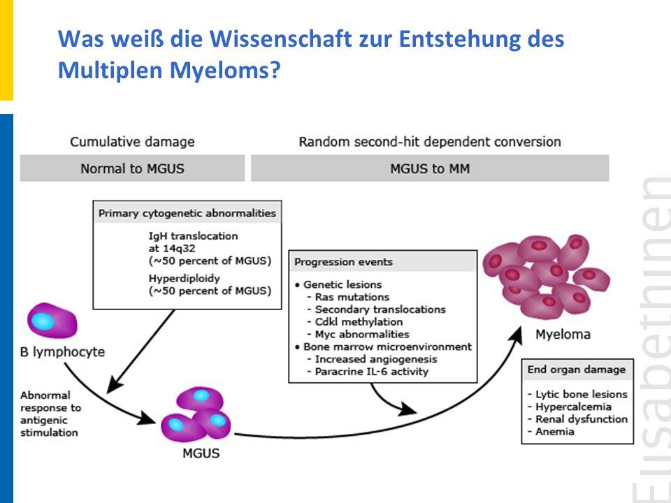 Fokus der Medizinisch-ärztlichen Betreuung liegt in der unmittelbaren Bekämpfung des Multiplen Myeloms und seiner Symptome.