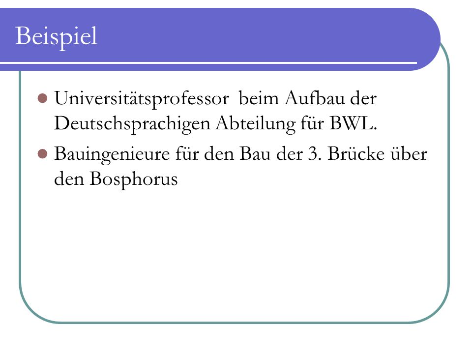 Beispiel Universitätsprofessor beim Aufbau der Deutschsprachigen Abteilung für BWL. Bauingenieure für den Bau der 3. Brücke über den Bosphorus