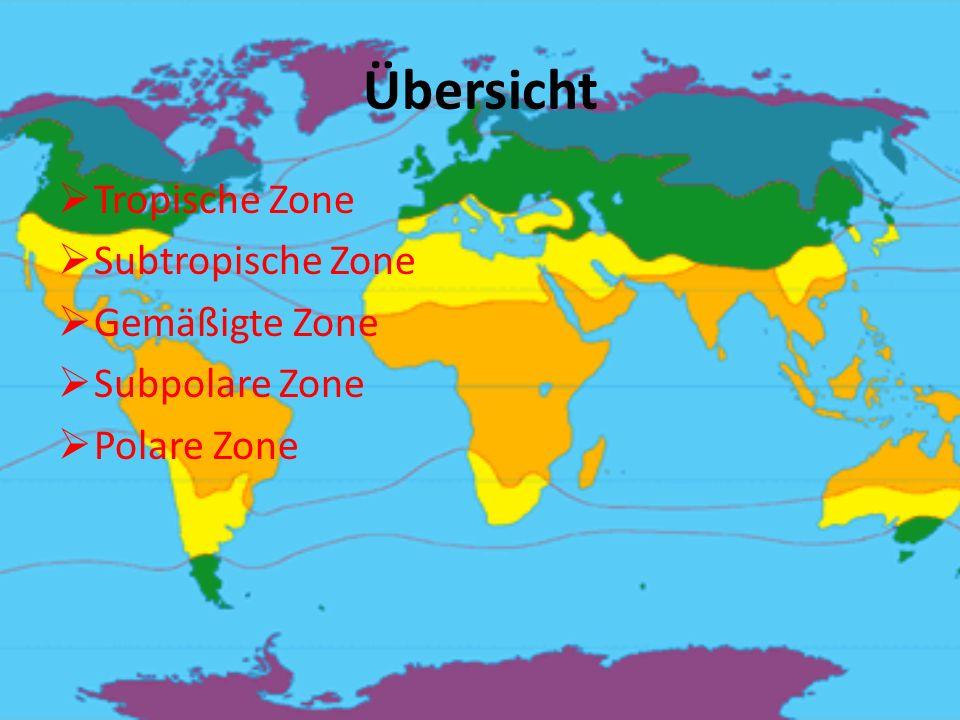 Übersicht  Tropische Zone  Subtropische Zone  Gemäßigte Zone  Subpolare Zone  Polare Zone