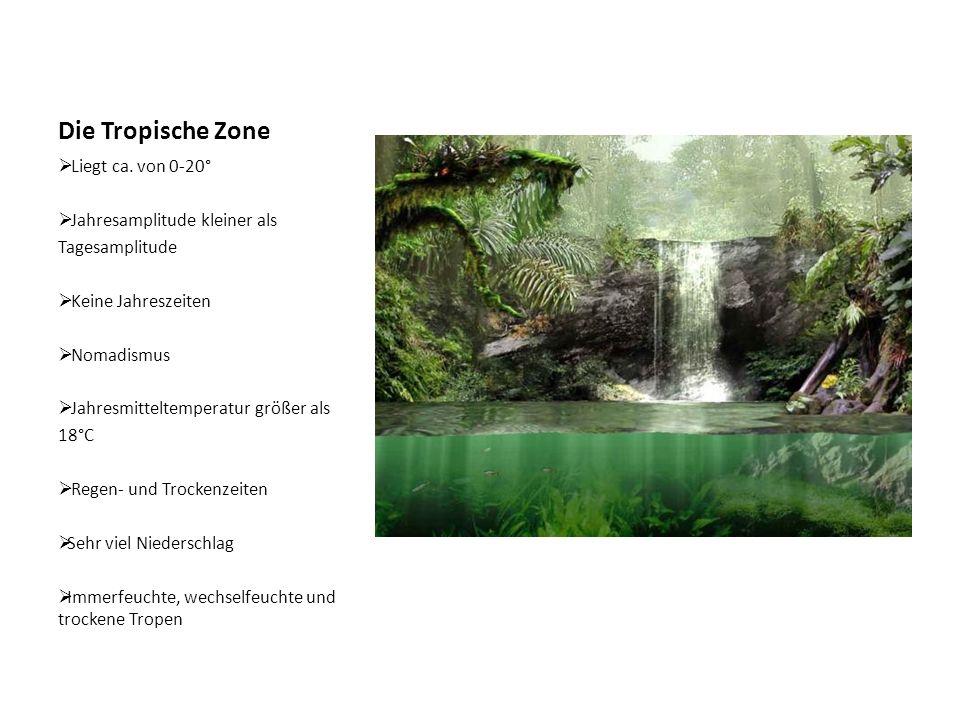 Subtropische Zone  Ca.