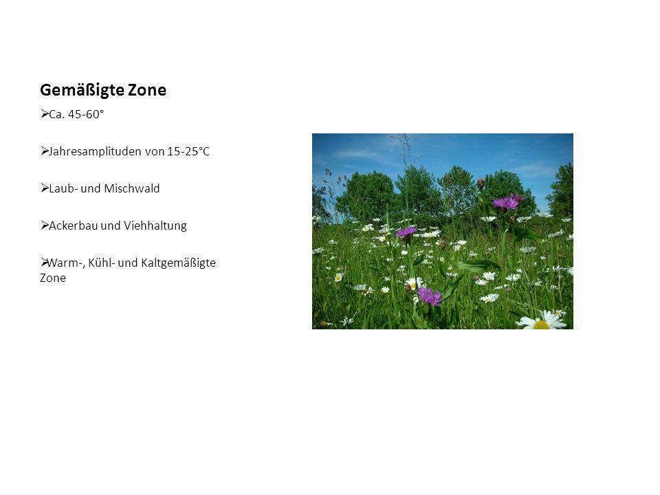 Gemäßigte Zone  Ca. 45-60°  Jahresamplituden von 15-25°C  Laub- und Mischwald  Ackerbau und Viehhaltung  Warm-, Kühl- und Kaltgemäßigte Zone