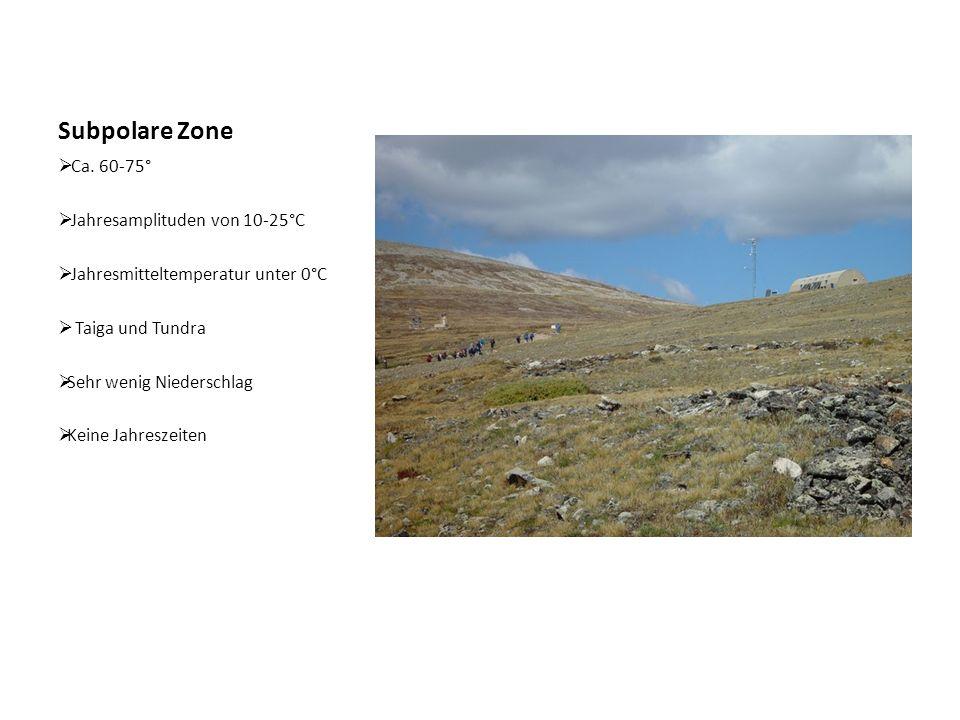 Subpolare Zone  Ca. 60-75°  Jahresamplituden von 10-25°C  Jahresmitteltemperatur unter 0°C  Taiga und Tundra  Sehr wenig Niederschlag  Keine Jah