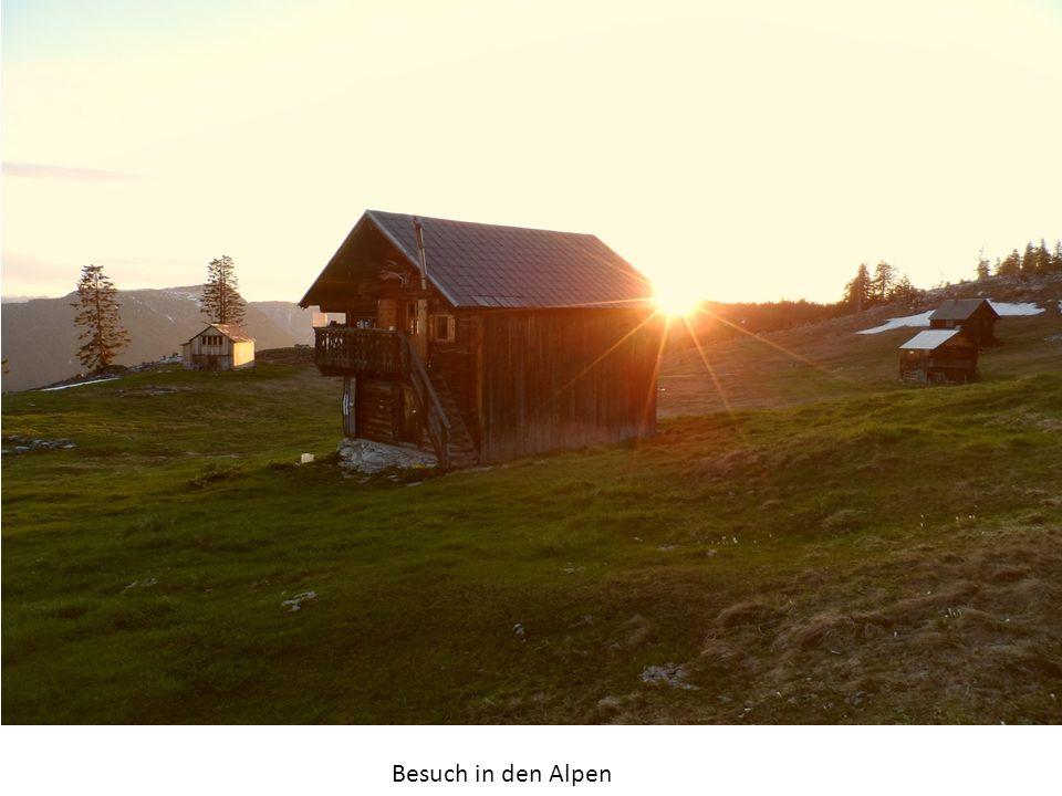 Besuch in den Alpen